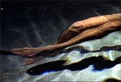 Nelson Henricks, Crush, 1997. Image tirée de la vidéo, avec l'aimable concours de l'artiste.