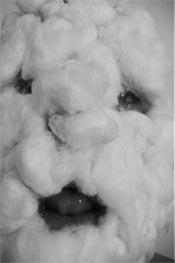 Nelson Henricks, Fuzzy Face, 2001. Image tirée de la vidéo, avec l'aimable concours de l'artiste.